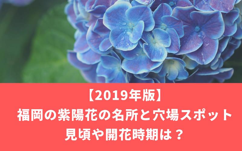 【2019年福岡】紫陽花の名所と穴場スポット3選!見頃や開花時期は?