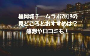 福岡城チームラボ2019の見どころとおすすめは?感想や口コミも!
