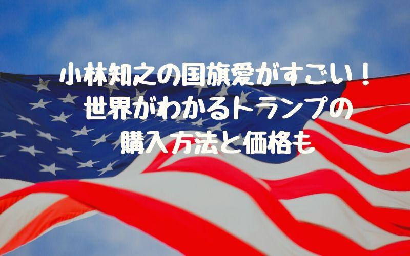 小林知之の国旗愛がすごい!世界がわかるトランプの購入方法と価格も