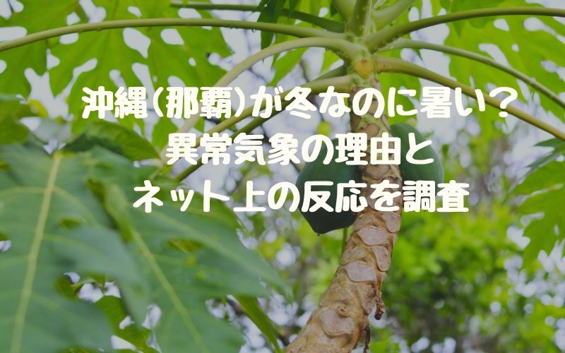 沖縄(那覇)が冬なのに暑い?異常気象の理由とネット上の反応を調査