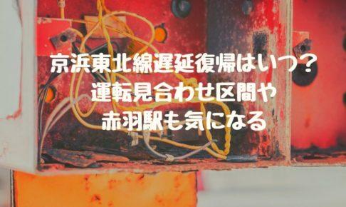 京浜東北線遅延復帰はいつ?運転見合わせ区間や赤羽駅も気になる