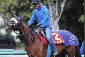 アーモンドアイが可愛い!馬体が美しい画像やレース動画も気になる